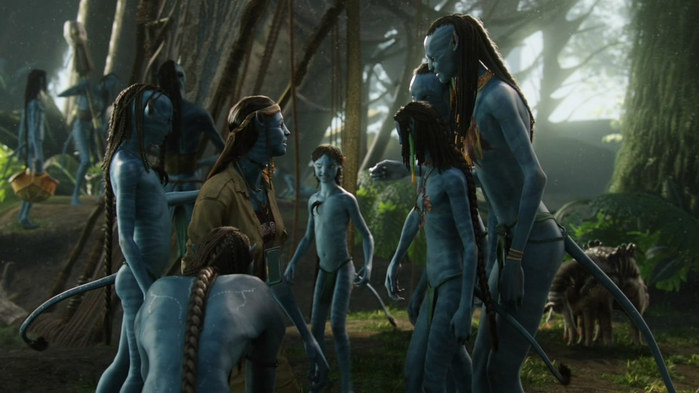 Avatar_Extended_Cut_BDRip_720p.mkv_snapshot_01.09.50__2010.12.27_20.10.53_ (700x393, 71Kb)