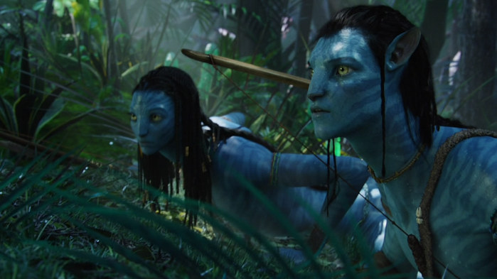 Avatar_Extended_Cut_BDRip_720p.mkv_snapshot_01.08.44__2010.12.27_19.07.15_ (700x393, 66Kb)