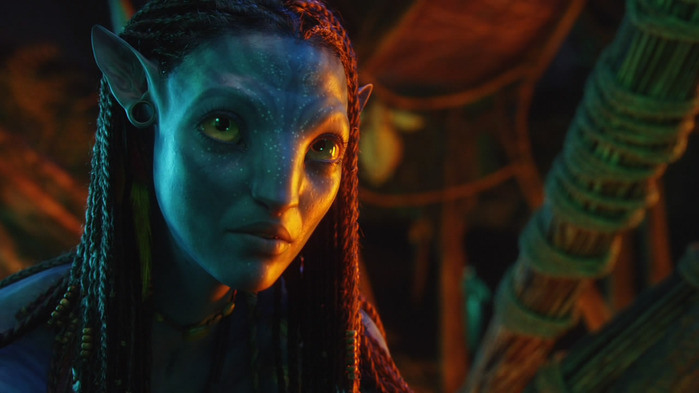 Avatar_Extended_Cut_BDRip_720p.mkv_snapshot_01.29.38__2011.01.06_00.45.32_ (700x393, 68Kb)