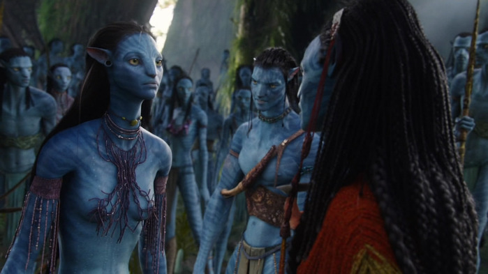 Avatar_Extended_Cut_BDRip_720p.mkv_snapshot_01.42.09__2011.01.08_20.55.48_ (700x393, 75Kb)
