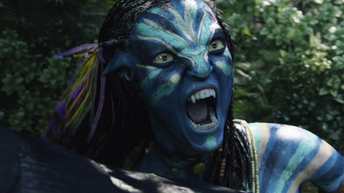 Avatar_Extended_Cut_BDRip_720p.mkv_snapshot_02.41.32_[2011.02.22_22.53.56] (700x393, 76Kb)