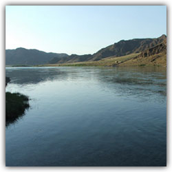 reka[1] (250x250, 10Kb)