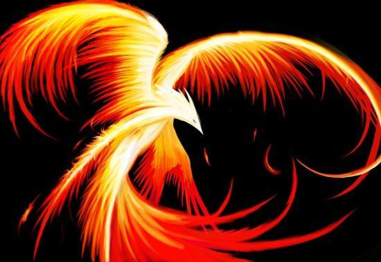 phoenix firebird (550x379, 37Kb)