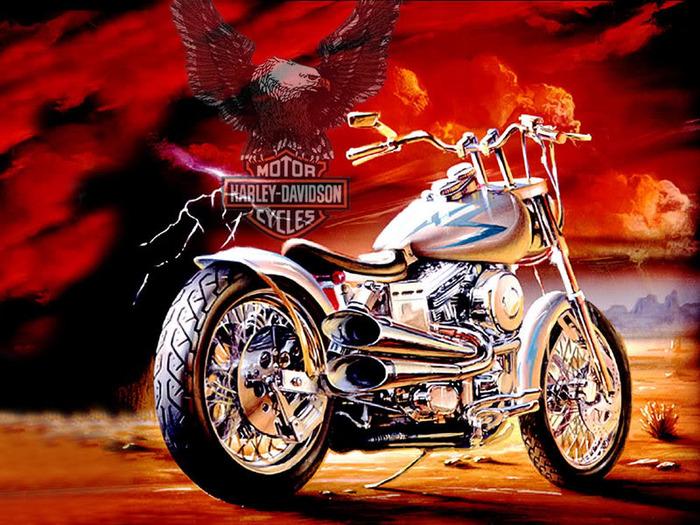 9d8a6__Harley-Davidson (700x525, 181Kb)