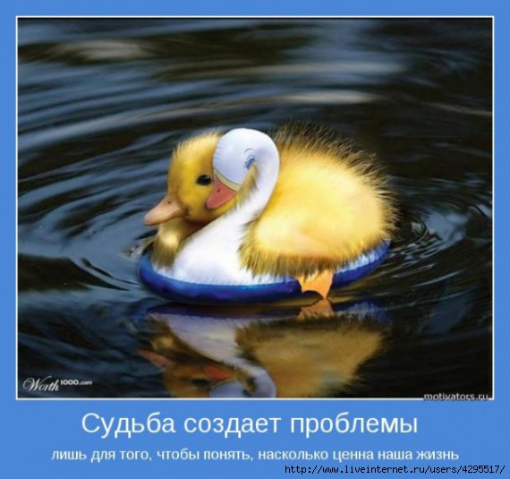 мотиваторы/4295517_1316194985_sudba610x573 (570x535, 130Kb)