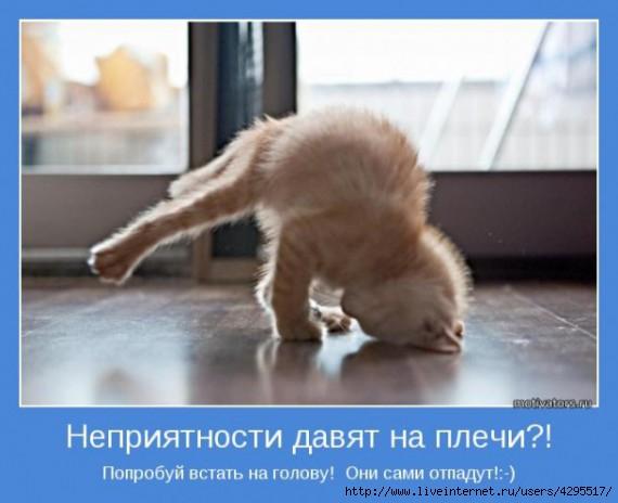 мотиваторы/4295517_1316195161_nepriyatnostidavyatnaplechi610x497 (570x464, 104Kb)