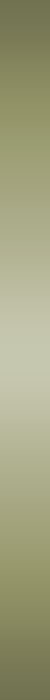 776 (50x700, 8Kb)