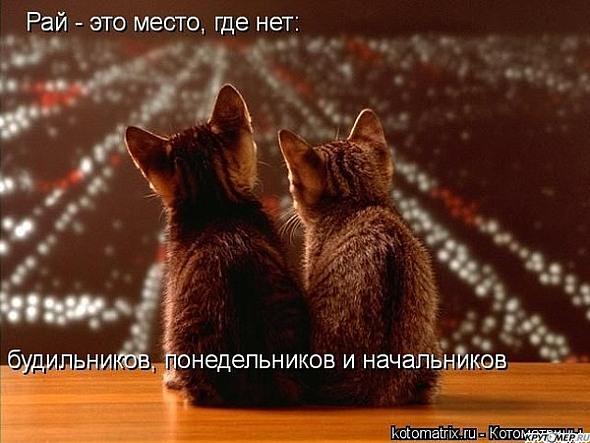 http://img0.liveinternet.ru/images/attach/c/4/78/390/78390408_73391540_86e3fd762.jpg