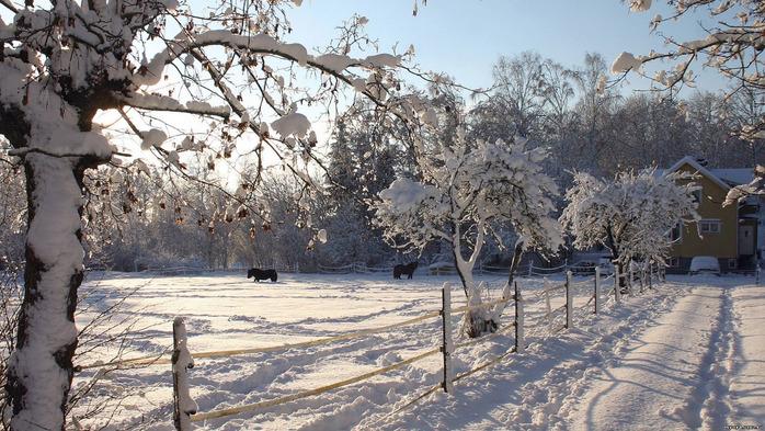 Фотографии зима обсуждение на