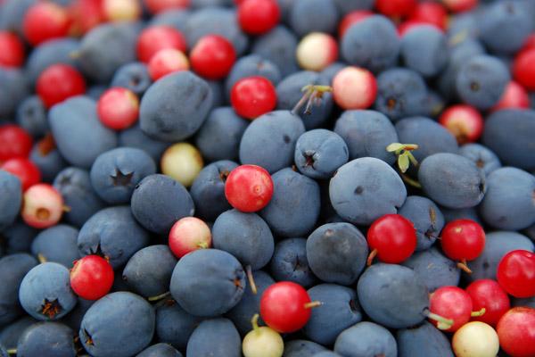 фруктово-ягодное настроение 28747