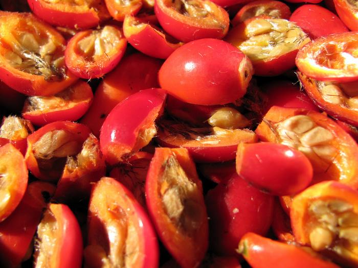 фруктово-ягодное настроение 71083