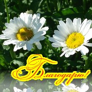 MegaAvatar_1316926630134 (190x190, 91Kb)