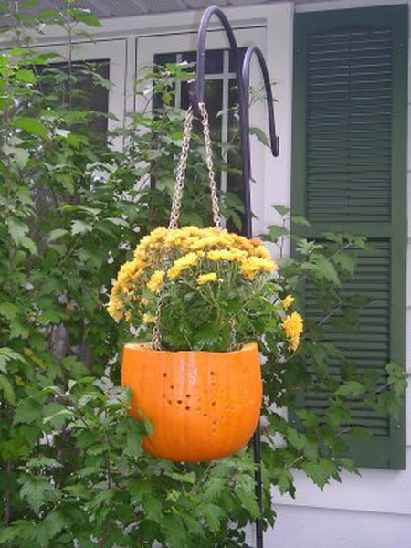 pumpkin-as-vase-creative-ideas8 (450x600, 88Kb)