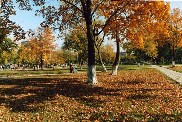 Осень в парке(450x300, 5Kb)