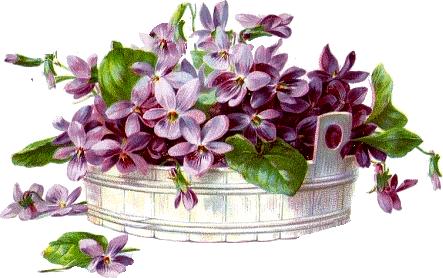 cajoline_vintageflowers4_1 (443x278, 86Kb)