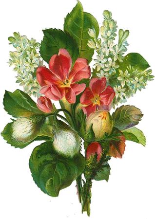 cajoline_vintageflowers3_10 (318x450, 284Kb)