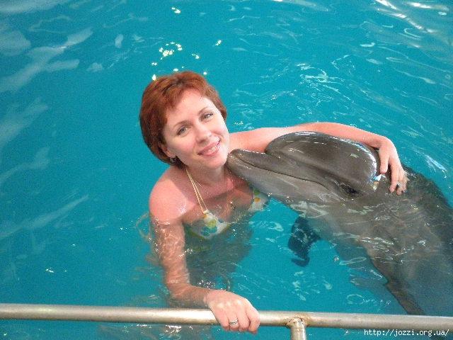 с дельфином (640x480, 182Kb)