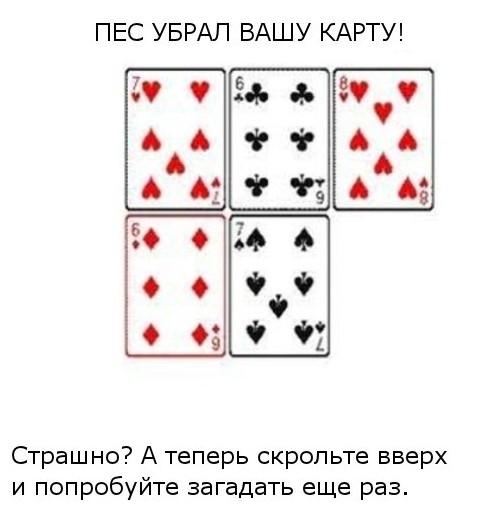 1317206815_3 (492x505, 42Kb)