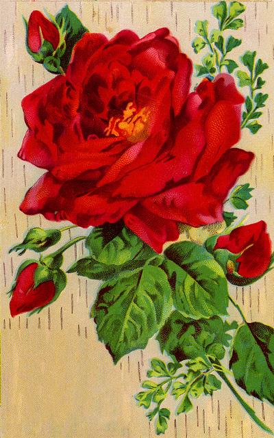 предпросмотр. таблица цветов.  Автор схемы.  0. Размеры: 119 x 190 крестов Картинки. оригинал.