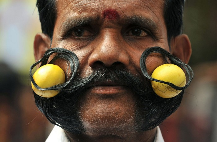 indian-festival-5 (700x459, 94Kb)
