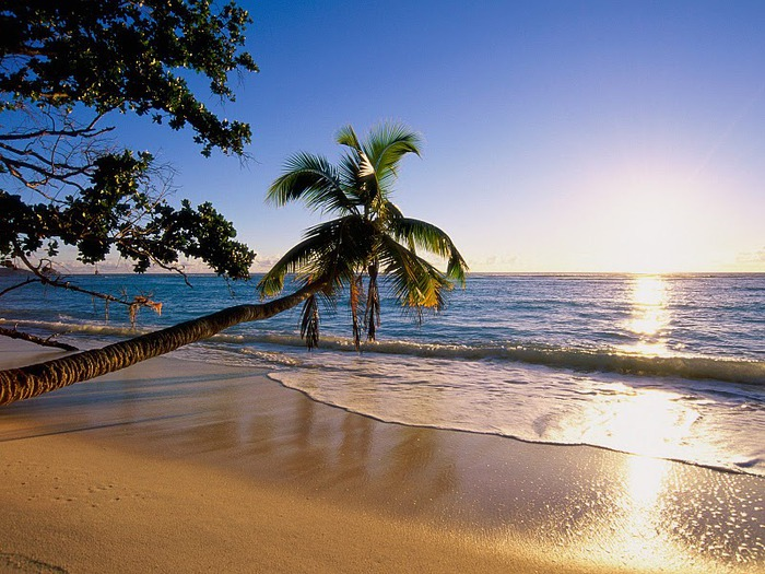 Silhouette Island (700x525, 139Kb)