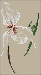 3937664_DMCArum_Orchid (138x250, 6Kb)