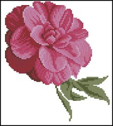 3937664_DMCFlowersFleurs_Camellia (225x250, 13Kb)