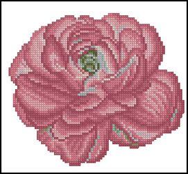 3937664_DMCFlowersFleurs_Ranunculus (271x250, 18Kb)