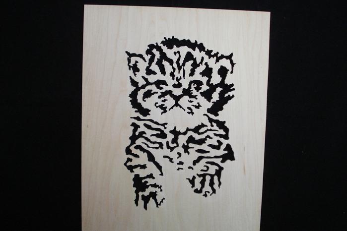 1150-Kitten (700x466, 168Kb)