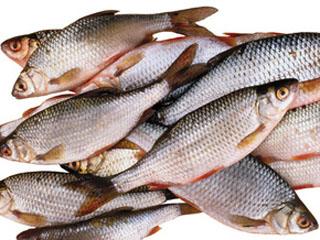 Шведские ученые нашли мощное лекарство в воде и речной рыбе