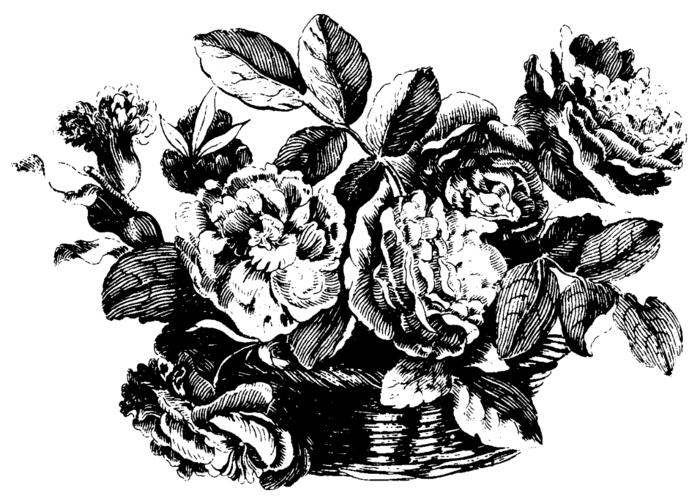 roses007 (700x504, 184Kb)