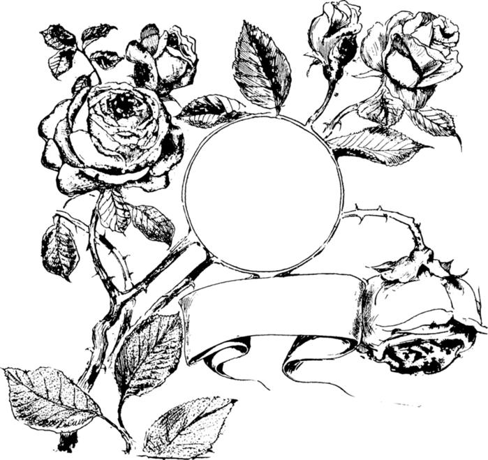 roses031 (700x659, 383Kb)