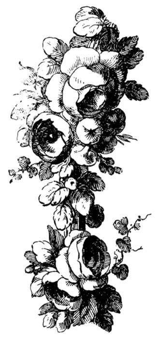 roses016 (325x700, 211Kb)