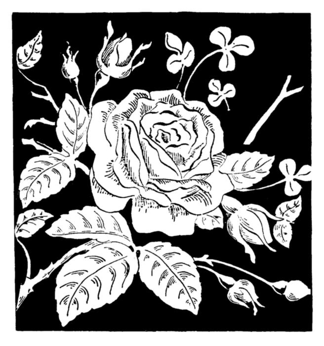 Открытки с графикой черно-белой 36