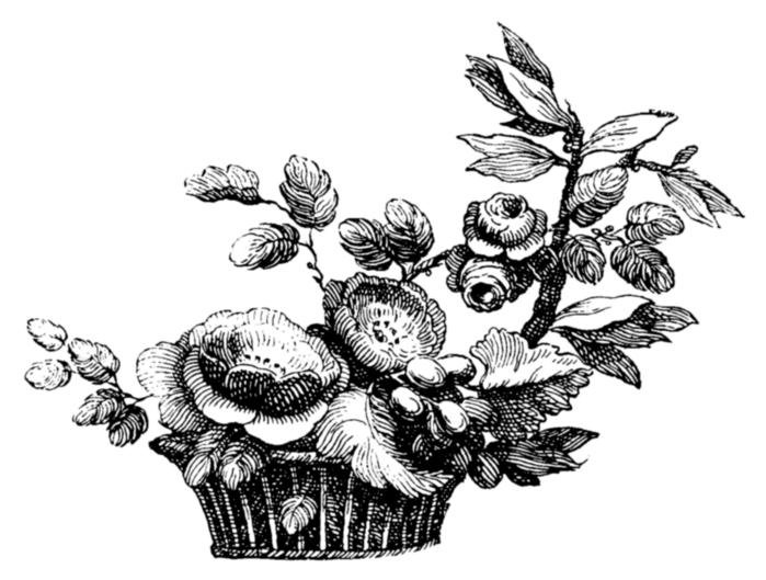 roses078 (700x529, 149Kb)
