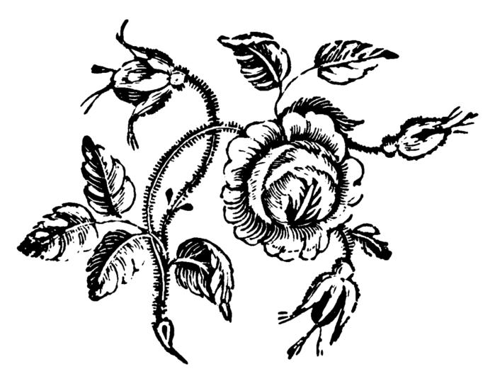roses079 (700x538, 93Kb)