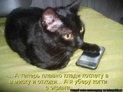 s3img_161461572_23160_1 (400x299, 24Kb)