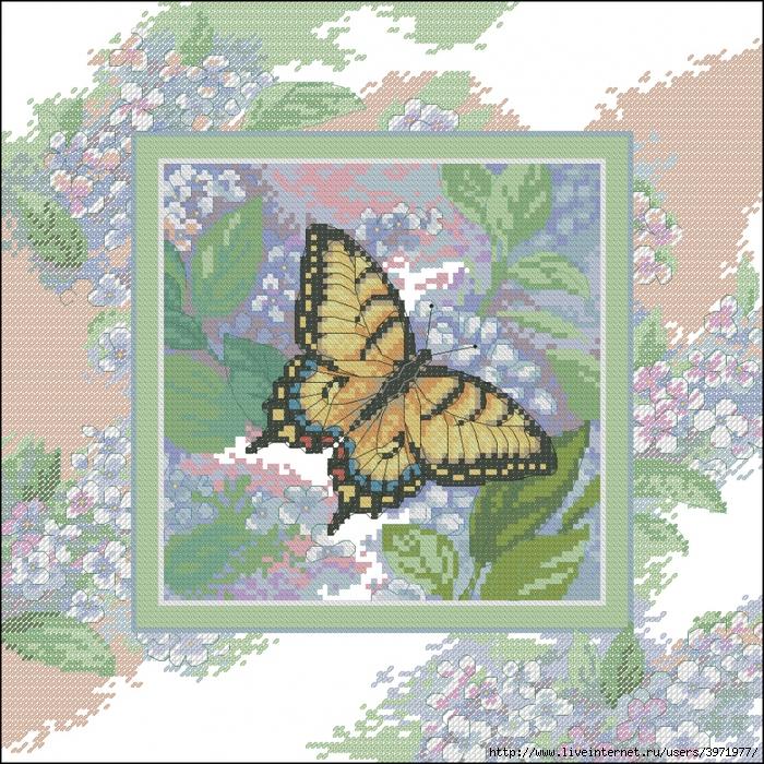 3971977_Butterflies_055 (700x700, 569Kb)