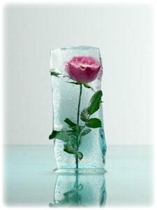 розовая вода (225x300, 9Kb)