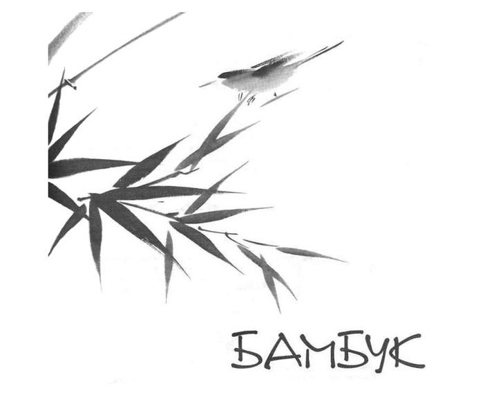 4195696_bamb1 (700x581, 34Kb)