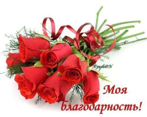 73149381_moya_blagodarnost (500x400, 37Kb)