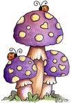 Превью Mushrooms (397x576, 94Kb)