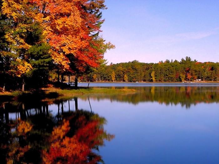 осень у озера (700x525, 102Kb)