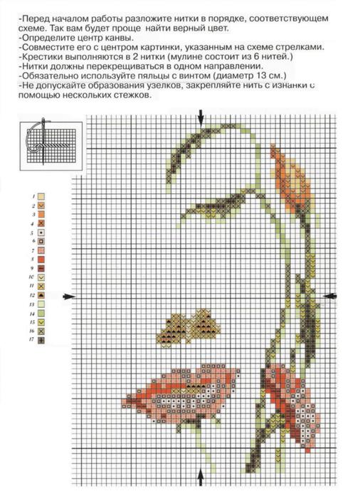 Лицо-цветы-схема (496x700, 311Kb)