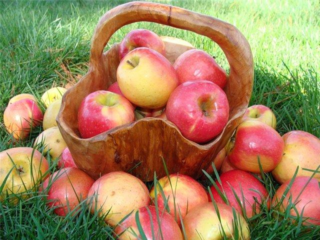 варенье из яблок (640x480, 90Kb)