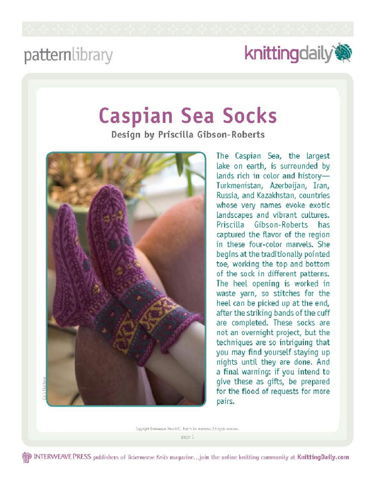 Caspian_Sea_Socks_a_1__Page_1 (541x700, 298Kb)