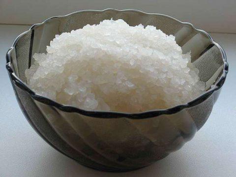 9459_1.jpg рисовый гриб (480x360, 25Kb)