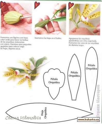orhideya_0 (395x480, 45Kb)