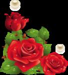 Превью розы__жемчуг1_копия (635x700, 273Kb)