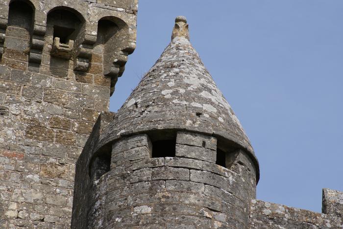 Замок Бейнак (Chateau de Beynac) 60288